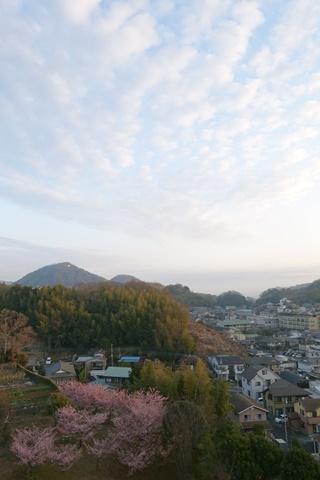 20160305izunagaoka4.JPG