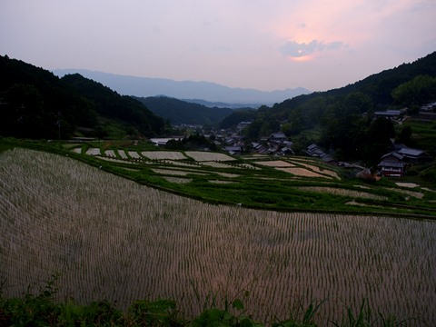 20140620asuka5.JPG