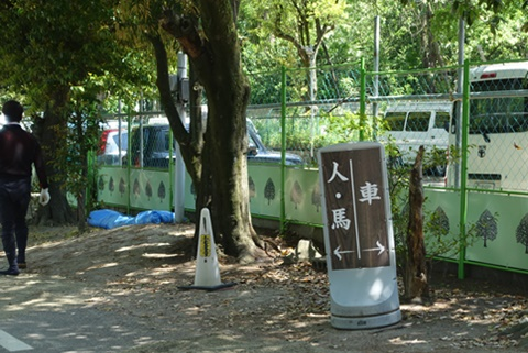 20160505fujinomori3.JPG